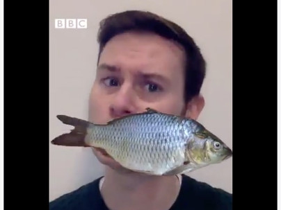 How BBC Radio Can Help You Learn English