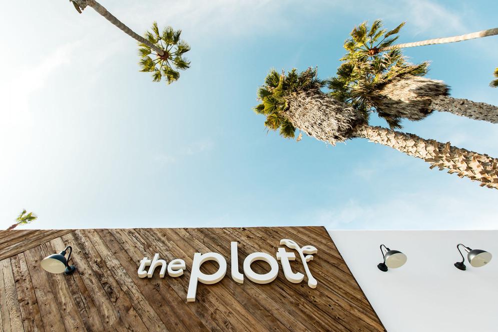 ThePlot(33of41).jpg