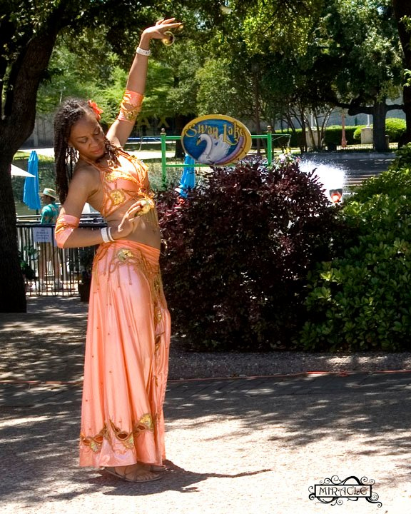 NaDi El Raks - Dallas Belly Dance