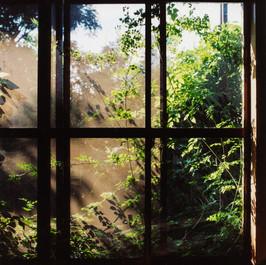 夏の窓.jpg