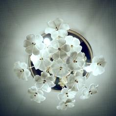 花の灯り.jpg