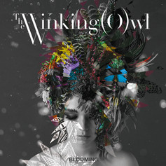 The winking owl「BLOOMING」