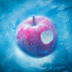 Aimer「凍えそうな季節から」