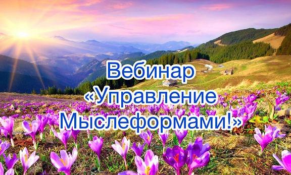 IMG_9786.jpg
