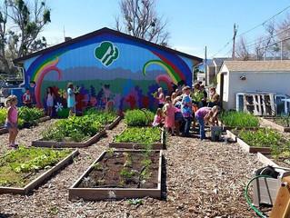 Garden Plot Rental