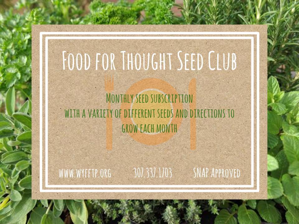 seed club flyer