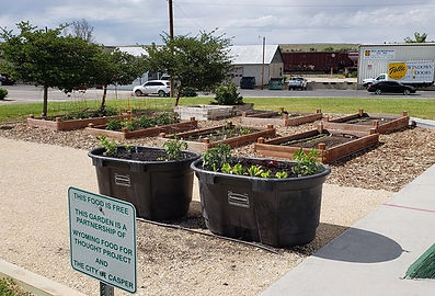 FGriends of Dallason Park Community Garden
