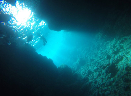 冬も出来るの?冬の青の洞窟ダイビング