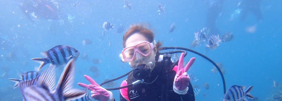 お魚と一緒に泳げる!
