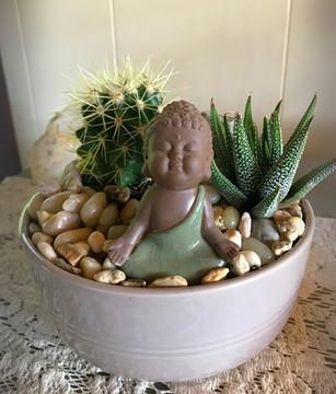 Buddha Rock Garden