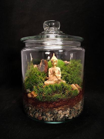 Meditation Terrarium