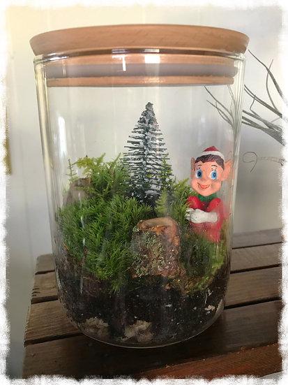 Holiday Elf on the shelf terrarium