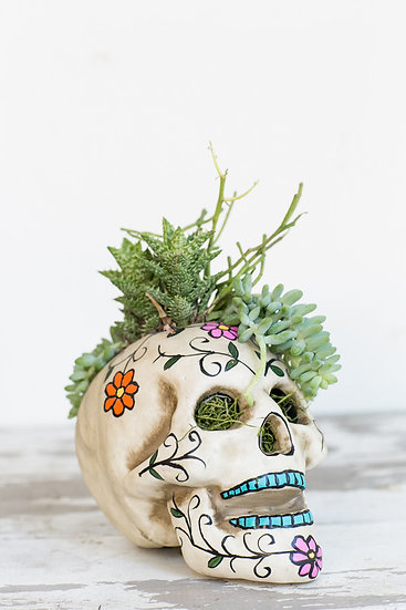 Sugar Skull Gardens