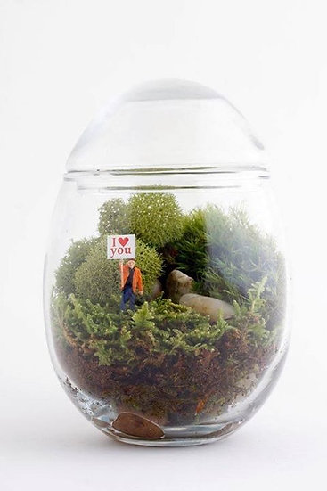 I Love You Terrarium