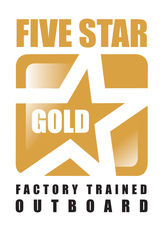 5 Star Gold Logo-601x464-3d8cac0.jpg