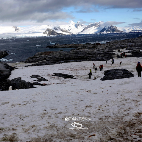 Beauty of Antartica