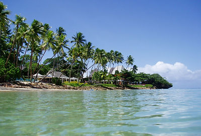 tropical-fiji-island-4-1408384.jpg