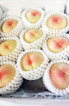 【ご家庭用/3kg】岡山白桃 清水白桃 平箱(約8~10個)
