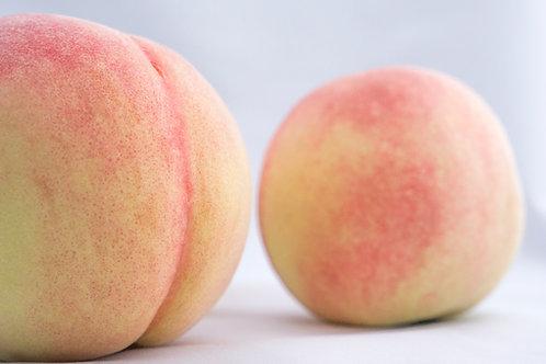 【最高級/4kg】岡山白桃 なつごころ 贈答用(約10~12個入り)