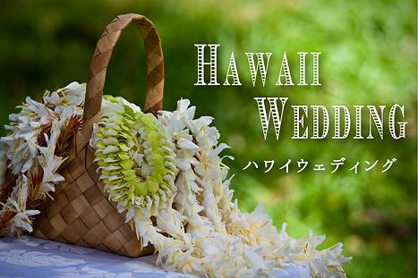 ハワイ.png