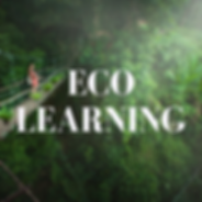 eco learning.png