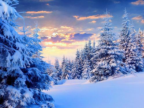 Genesis Christmas