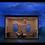 Thumbnail: Alsatia's lullaby