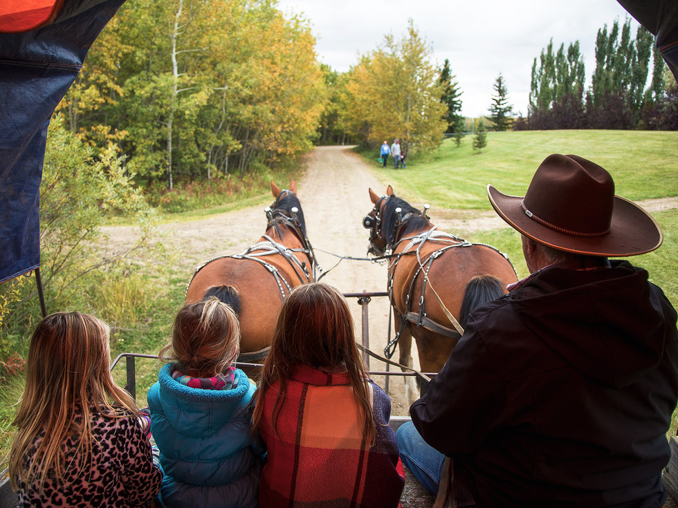 Kids. horse riding. Events photography. Lifestyles photography