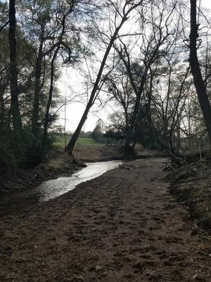 Holly Springs Creek at Dusk