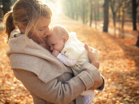 The Seasons of Motherhood by Randi Levin