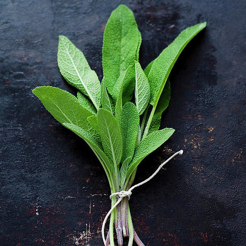 Fresh Sage (Bunch)