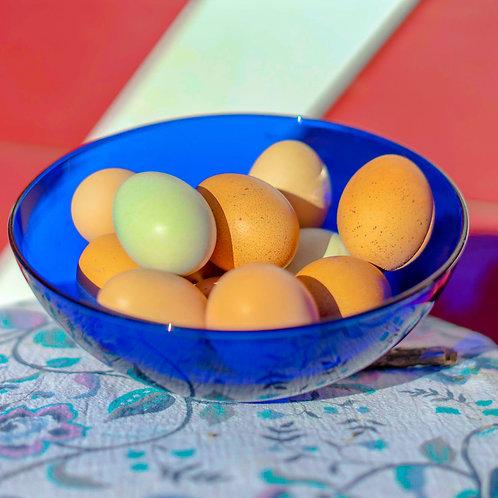 Duck Eggs (1 Doz.)