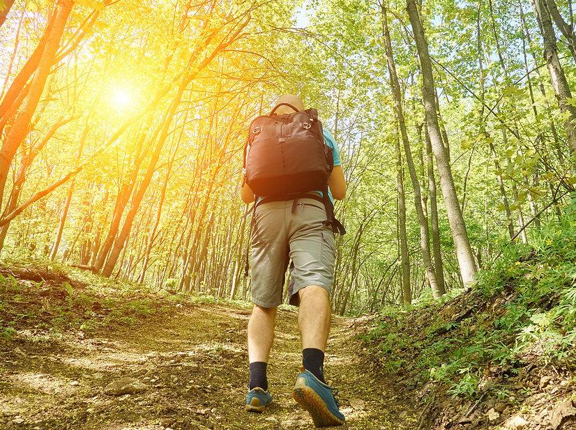 Man in forest.jpg