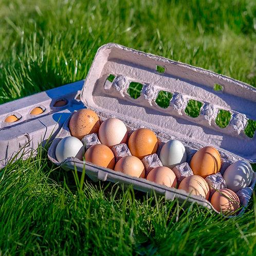 Chicken Eggs (1 Doz.)