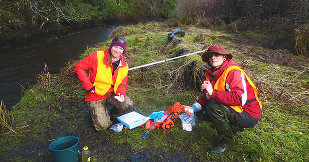 Task force stewardship along the creek