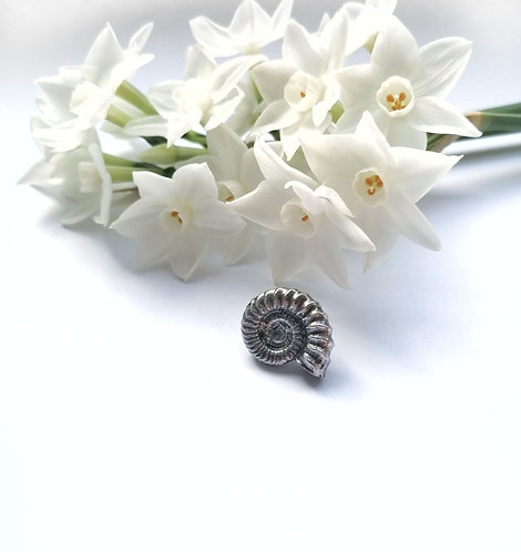 Shell lapel pin