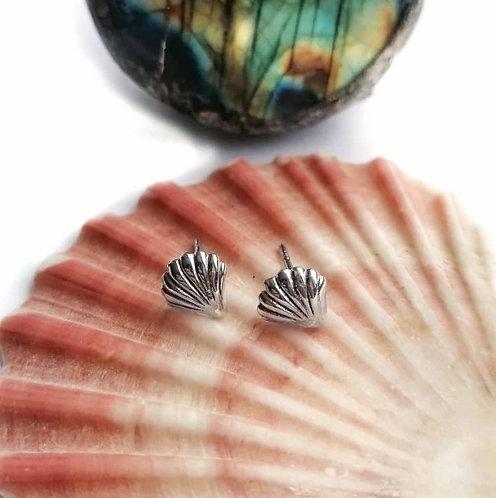 Silver sea shell stud earrings