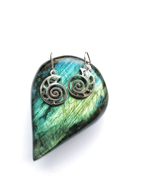 Silver & abalone swirl shell earrings