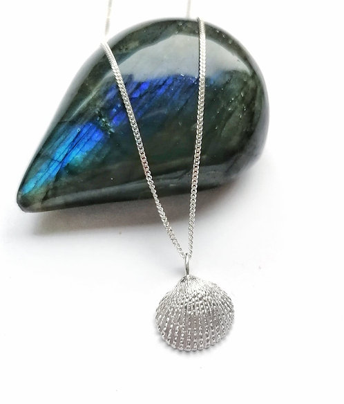 Silver detailed shell necklace