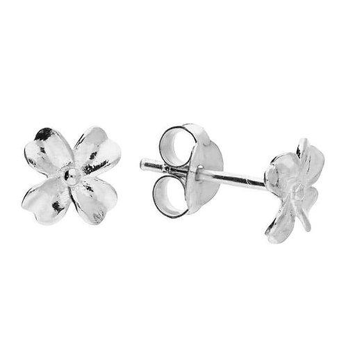 Sweet silver clover stud earrings