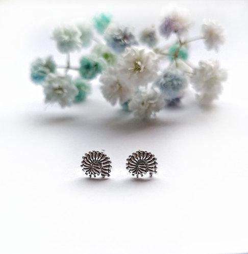 Silver shell stud earrings