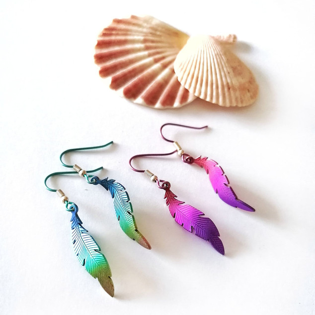 Titanium feather earrings