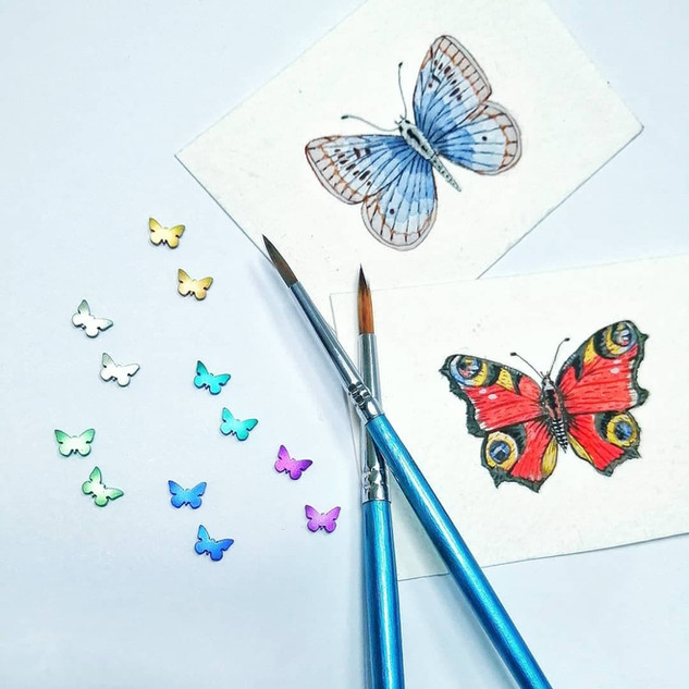 Titanium butterfly stud earrings