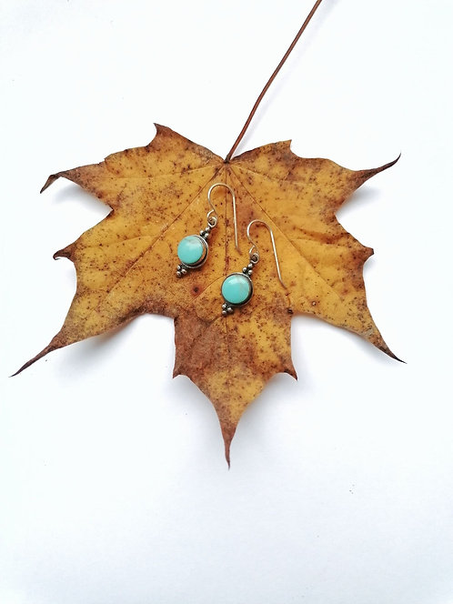 Silver & turquoise detail earrings