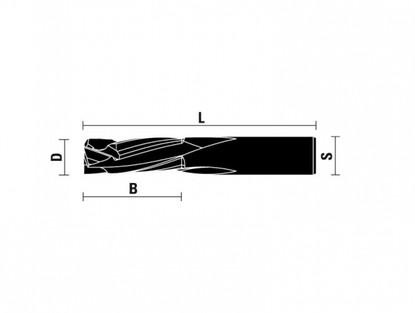 klein_frese-hw-integrale-a-compressione-