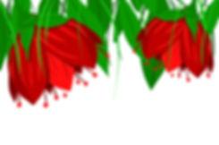 riippuvat-kukat.jpg