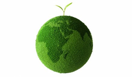 Re-Green Planet Earth from Tiny Tapir Eco