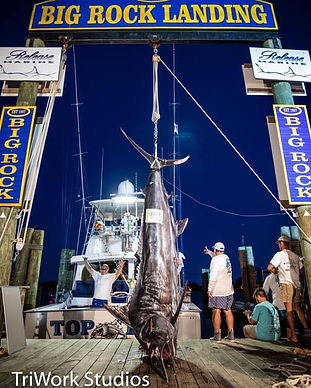 Portside Marina Big Rock Tournament.jpg