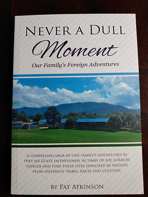 Never%20a%20Dull%20Moment%20book_edited.