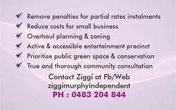 Ziggi Business card 2